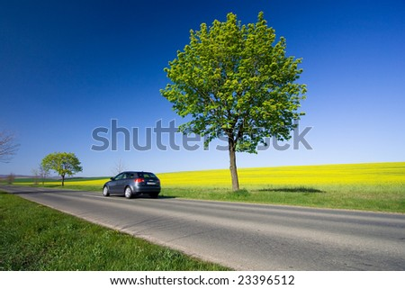 Beautiful weather 8. - beautiful day. Yellow field with blue car