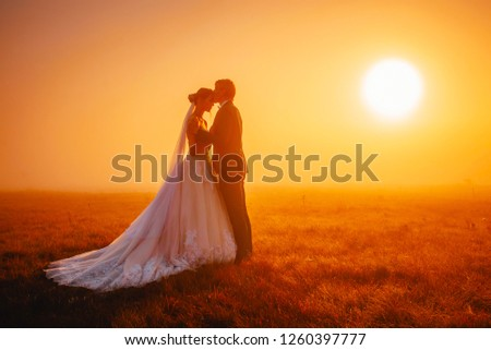 Beautiful wedding photo, bride and groom in morning autumn landscape #1260397777