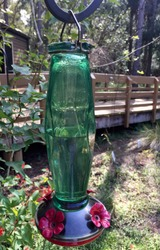 Beautiful whimsical style decorated recycled glass bottle hummingbird feeder in lush peaceful county park with disability accessible nature center, abundant wildlife, herbs and flowers in Florida USA