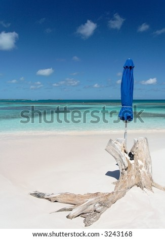 Beautiful white caribbean beach with blue umbrella and a stranded root