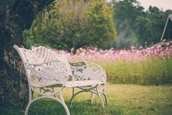 Beautiful white chairs under tree in garden, Thailand - Vintage effect style