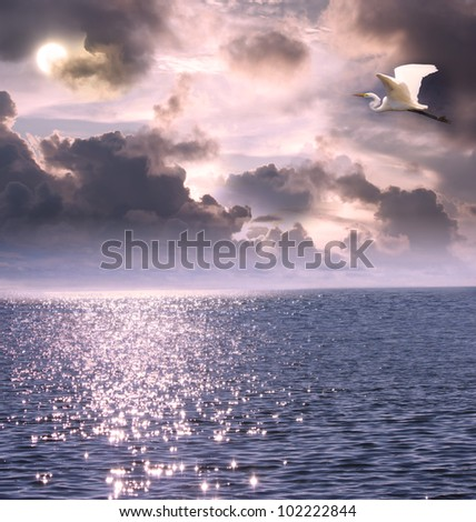 Beautiful white egret flying over the ocean under the moon light