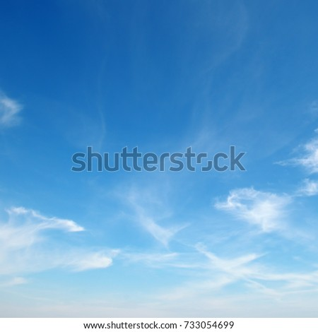 beautiful white fluffy clouds on background clear blue sky - Shutterstock ID 733054699