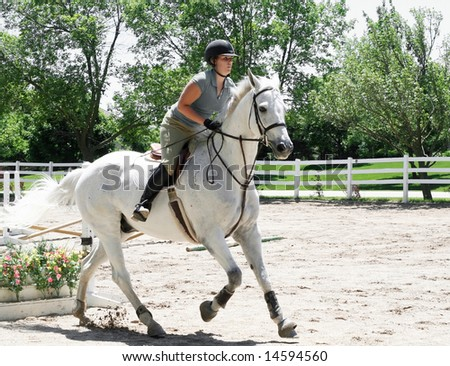 Beautiful White Horse With Lady Jumping Hurdles Stock ...