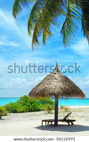 Beautiful white Maldivian beach with palm, parasol and turquoise sea