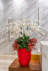 Beautiful white orchid flower pot for decoration in luxury hotel