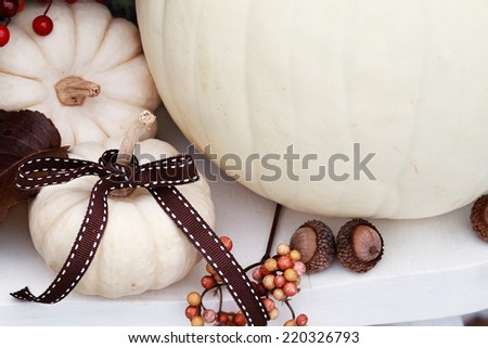 Beautiful white pumpkin with a brown bow. #220326793