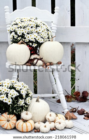 Beautiful white pumpkins and mums sitting on an old vintage chair on a porch in the autumn. #218061598