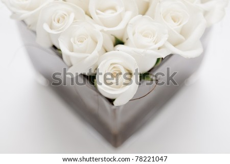 Beautiful White Roses Wallpapers Beautiful White Roses For