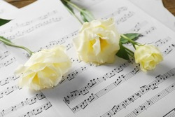 Beautiful white roses on musical notes pages background