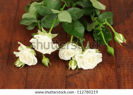 Beautiful white roses on wooden background close-up