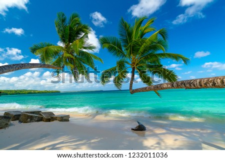 Beautiful white sandy beach in Kei Island, Indonesia.  One of the smoothest sand beaches in the world. Stockfoto ©