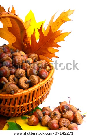 Beautiful wicker basket full of acorns, chestnuts and cones