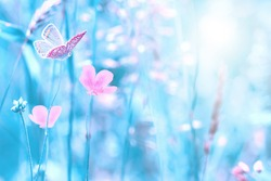 Beautiful wildflowers, butterfly in the dreamy meadow. Shallow depth macro background. Delicate pink and blue colors pastel toned. Greeting card template. Copy space. Nature floral springtime.