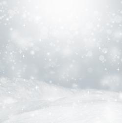 Beautiful winter background. Landscape with bokeh.