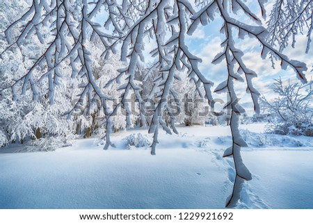 Beautiful winter landscape. Background winter images.  Domanic, Uludag, Bursa, Turkey.