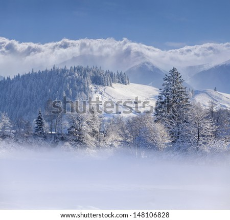 Beautiful winter landscape in mountain village