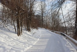 Beautiful winter landscape in the countryside. A road covered with snow leads up the hill. Picturesque forest. Deciduous trees. Blue sky and white clouds. Wonderful nature.