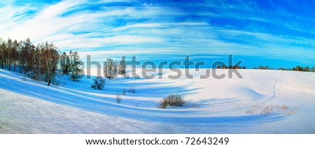 Beautiful winter landscape. Panorama