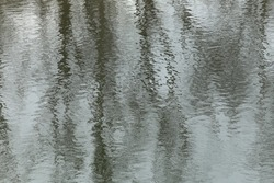 beautiful winter landscape reflection of trees in water quiet river on a cloudy day