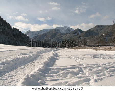 Beautiful winter landscape showing a cross-country ski run