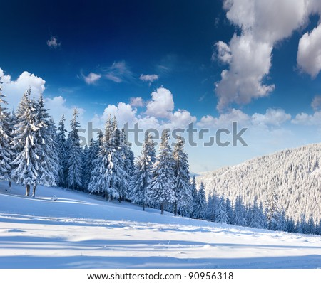 Beautiful winter landscape with snow covered trees. - stock photo