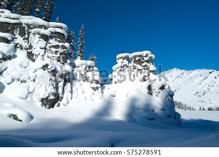 Beautiful winter landscape with snow covered trees, Altay #575278591