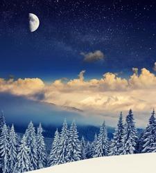 Beautiful winter landscape with snow covered trees. Carpathian, Ukraine, Europe. Beauty world.