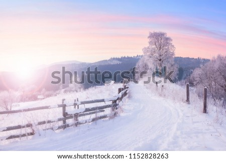 Beautiful winter nature landscape, amazing mountain view of sunset. Scenic image of snowy woodland. Frosty weather. Superb winter wallpapers. #1152828263