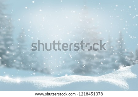 Beautiful winter night  landscape with moon.Christmas background  with snow covered trees. Happy New Year greeting card with copy-space.
