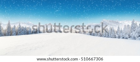 Beautiful winter panorama with fresh powder snow. Landscape with spruce trees, blue sky with sun light and high Alpine mountains on background #510667306