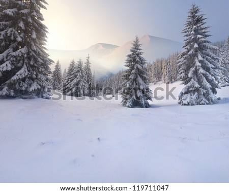 Beautiful winter sunrise in the mountains