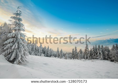 Beautiful winter sunrise photo taken in polish Beskidy mountains - Rogacz hill. View on Skrzyczne mountain.