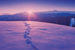 Beautiful winter sunset in a Carpathian mountain valley with track on a fresh snow. Majestic landscape. Ukraine, Europe. Vintage colors