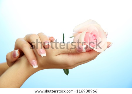 Beautiful woman hands with rose, on blue background