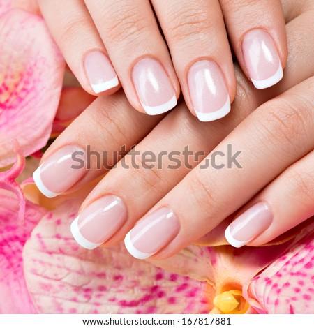 Beautiful Woman\'S Nails With Beautiful French Manicure