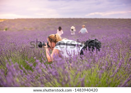Beautiful woman taking picture outdoors with a DSLR camera. Young blonde woman, professional photographer, taking pictures of a beautiful nature surrounding her, warm sunny day in lavender field.