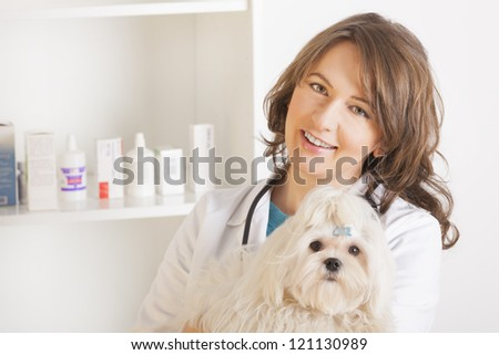 Beautiful woman veterinarian holding cute maltese dog standing in the treatment room
