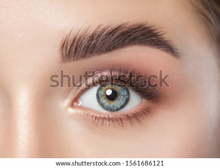 Beautiful woman with long eyelashes, beautiful make-up and thick eyebrows. Beautiful blue eyes close up. Looking at the camera. Makeup and Cosmetology concept.
