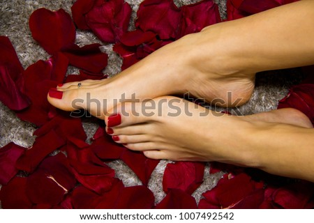 Beautiful women feet with smooth skin and red nails on the background of fresh red rose petals