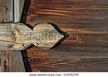 Beautiful wood texture close-up