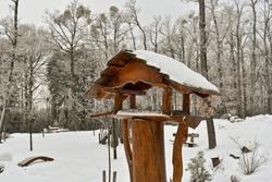 Beautiful wooden bird feeder in winter in Hungary