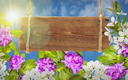 Beautiful wooden frame with branches of lush Rhododendron and wite cherry flowers on blue sky background. Asian card for relax and meditation. Decorative elements for yor design, mock up