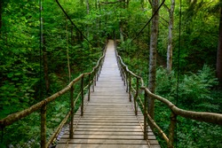 Beautiful wooden suspension bridge in summer dark forest