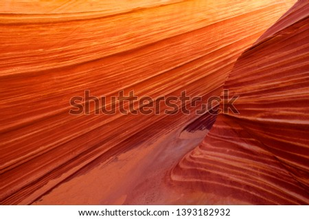 Beautiful yellow and red striated soft sandstone formation. The Wave, Vermilion North Coyote Buttes, Paria Canyon-Vermilion Cliffs Wilderness, Vermilion National Monument, Arizona, USA