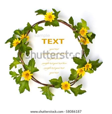 Beautiful yellow Flower Crown isolated on white background