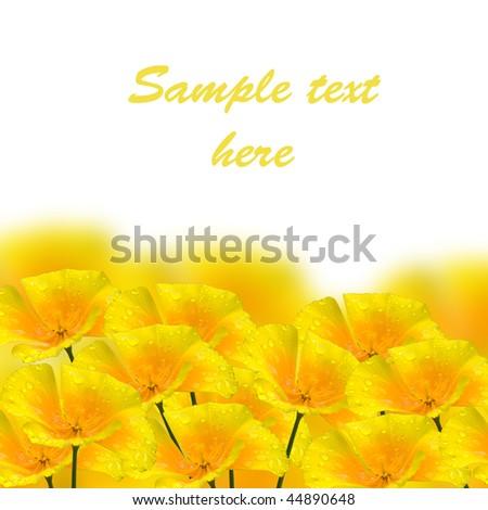 beautiful yellow flower with drop closeup