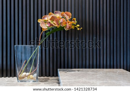 Beautiful yellow orchids in vases on marble table with black straight line wall interior decoration contemporary with space for advertising text #1421328734