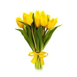 Beautiful yellow tulips over white