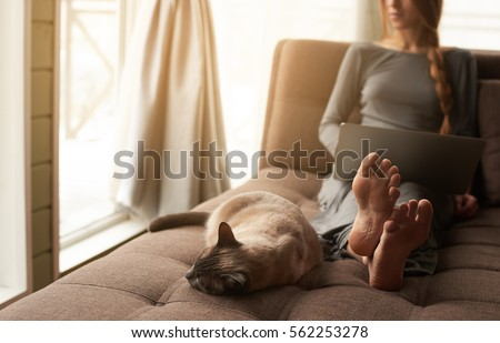 Beautiful young blond woman with braid working on a laptop and her cute cat sitting on the comfortable dark sofa at home. Focus on barefoot soles and cat. Cozy home atmosphere, backlit warm light.